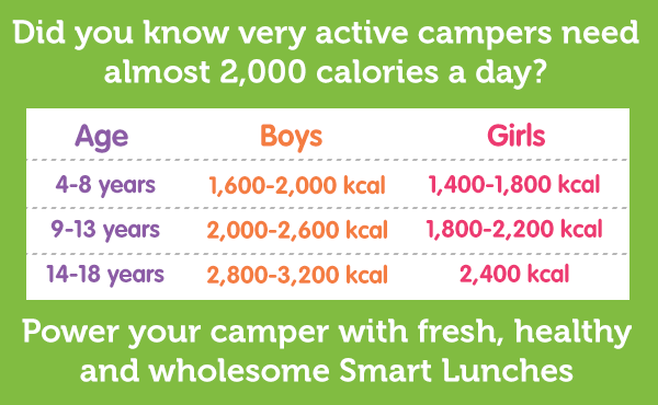 Power your camper with Smart Lunches